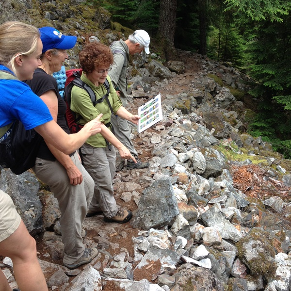 Weed-Watching-Hike-Mt_Teneriffe-2015