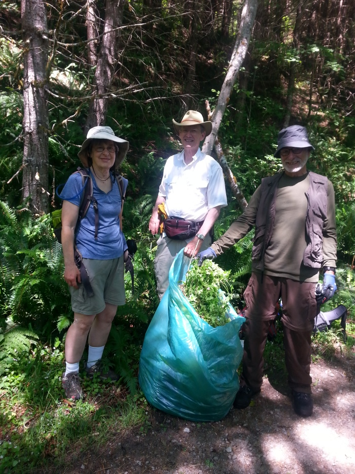 Volunteers-with-herb-robert-bagged-IraSpringTrail-2013-SShaw