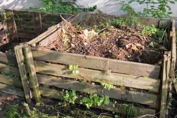 Backyard composting is great for most plants, just not invasive weeds that could re-grow.