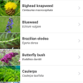 Screenshot of the WA Invasives smart phone app