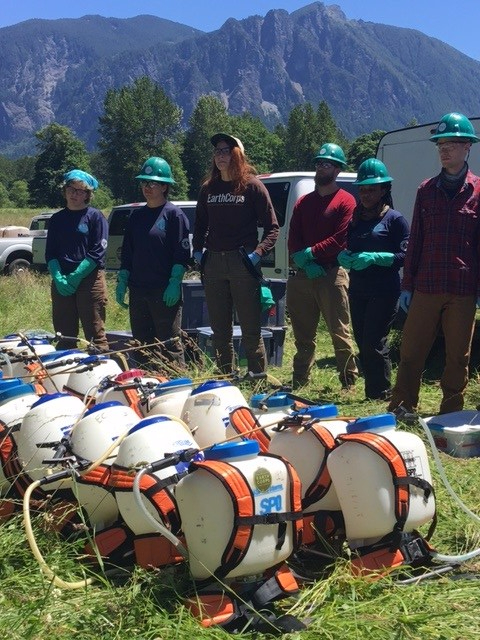 EarthCorps crew members with safety gear on stand near backpack sprayers ready for noxious weed control training.