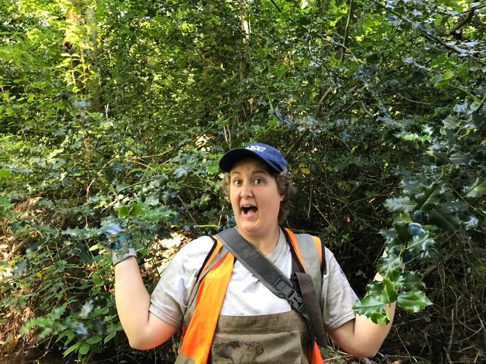 English holly in Swamp Creek wetland, photo by Cynthia Saleh