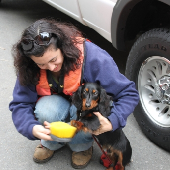 Person cleaning off the paws of a dog by a truck.