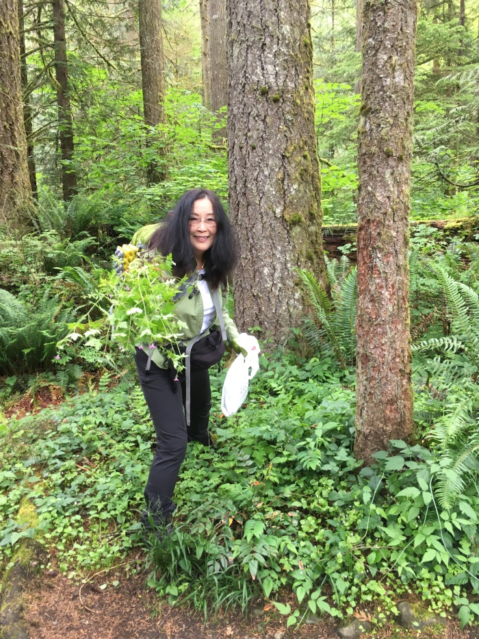 volunteer pulling a noxious weed in a forest