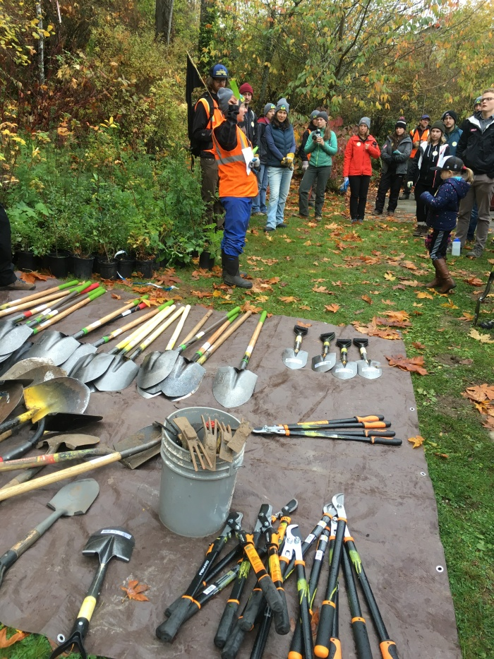 tools-and-volunteers-CheastyGreenspace-GSD2017-SShaw-IMG_0202