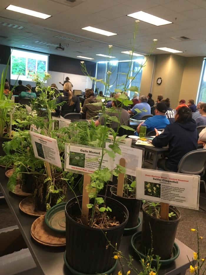 noxious weed control seminar 2018
