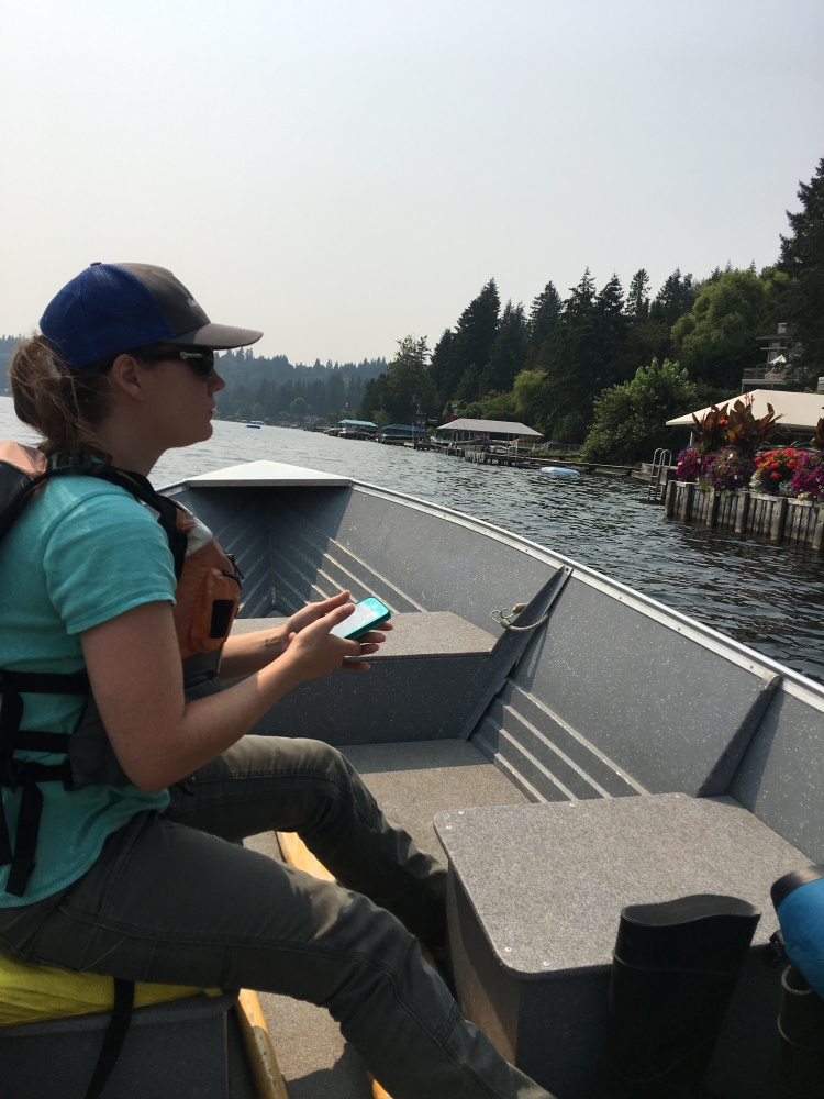 person recording data on lake weeds on a phone