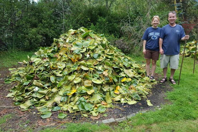 people standing by a large pile of fragrant water lily