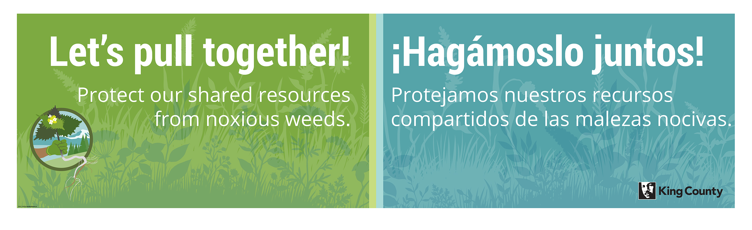 A banner that says Let's pull together! Protect our shared resources from noxious weeds