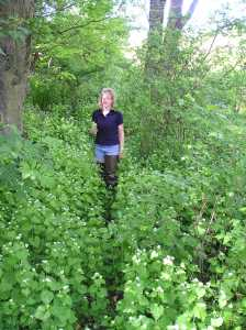 Maria stands in a forest where the whole understory is garlic mustard