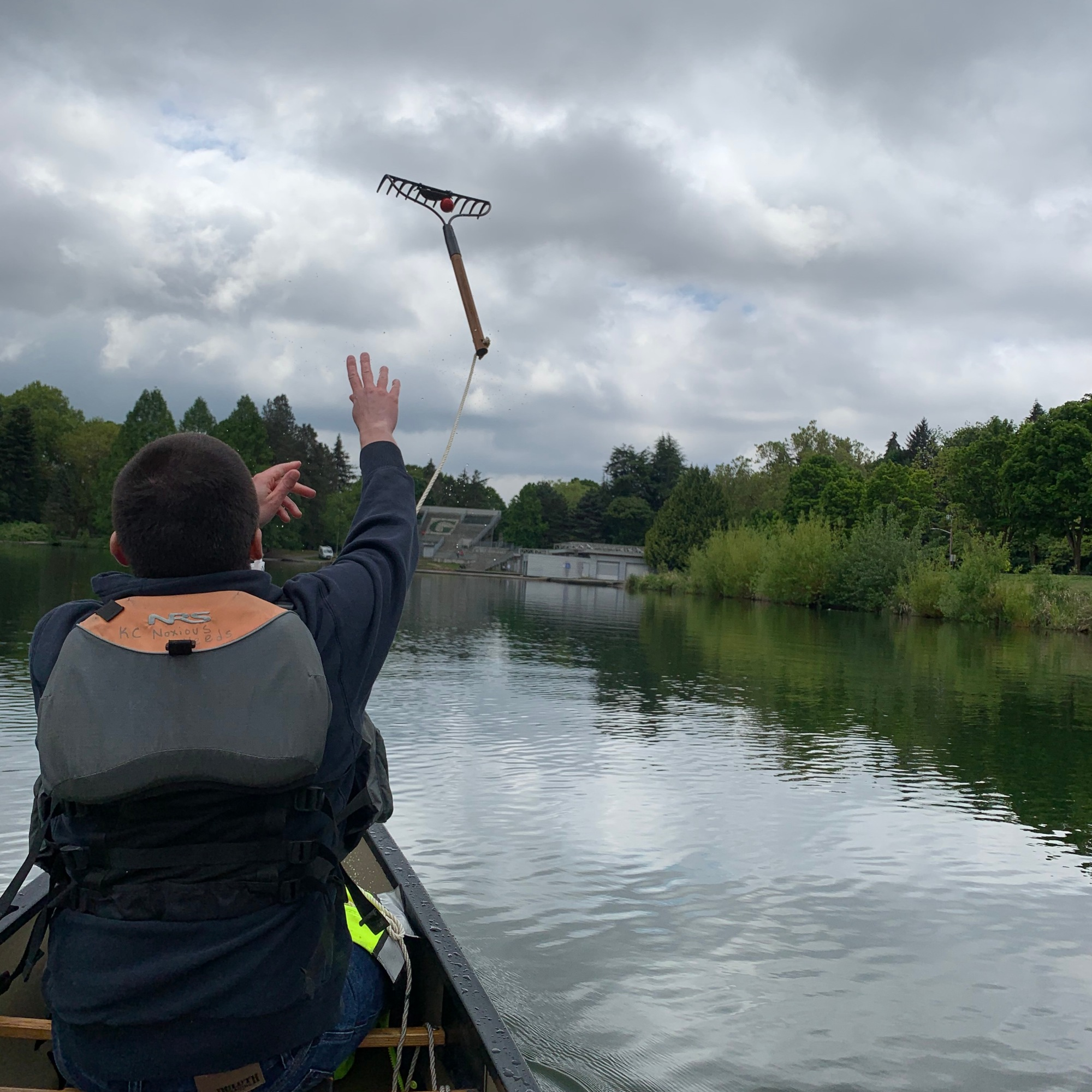 A person in a canoe tosses a rake tied to a rope into a lake to check for aquatic plants